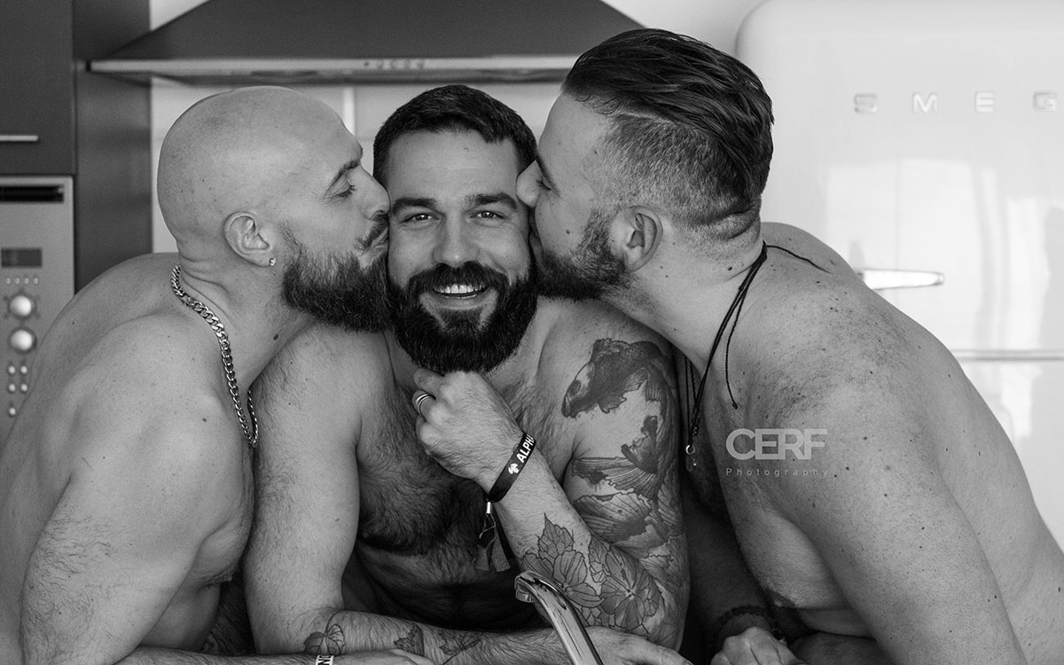 cerf bear gay